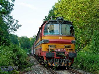Spadnutý strom ochromil dopravu na trati Trnava - Kúty