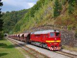 Sergej 781.168 s mimoriadným vlakom pre nemcov