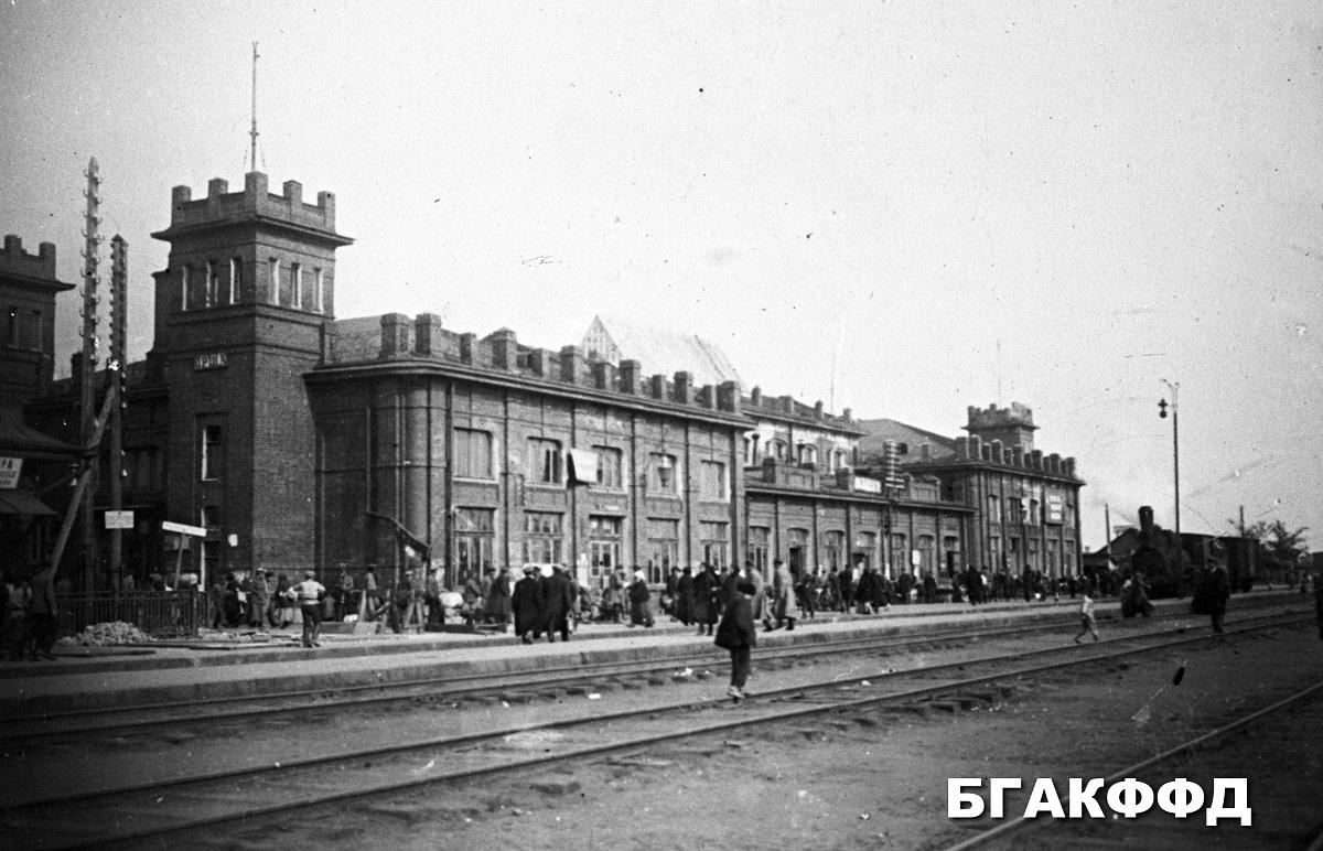 celkový pohľad na stanicu Orša 1925 rok
