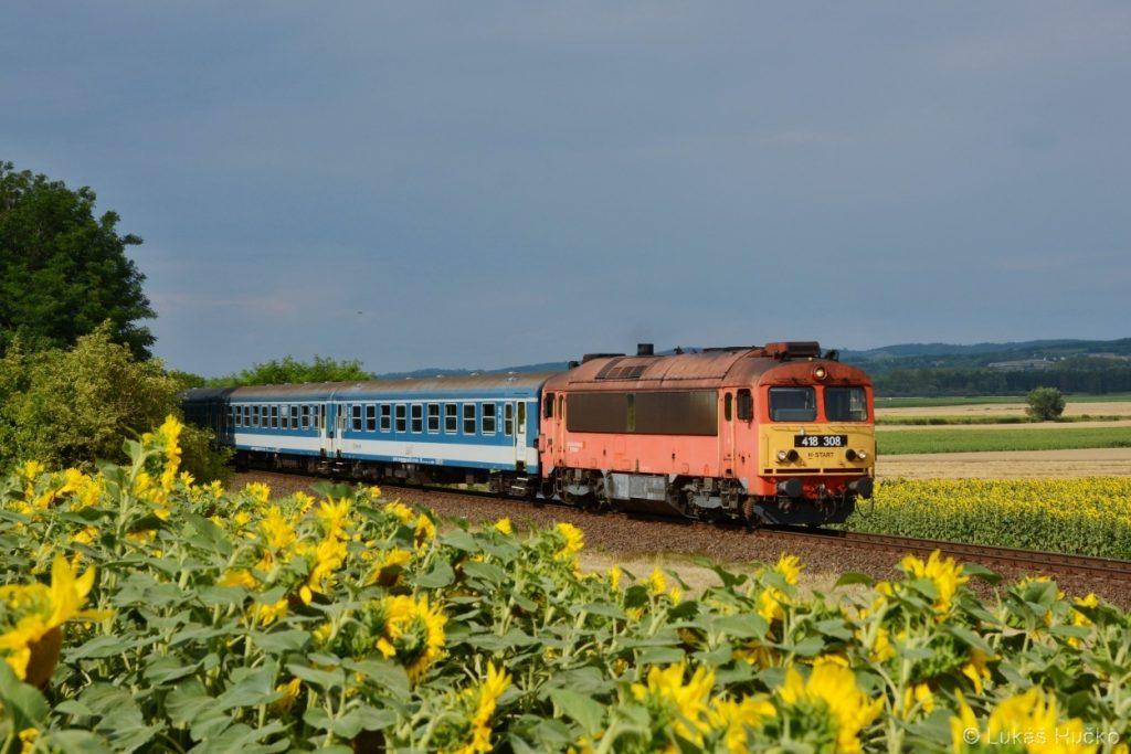 418.308 za slunečnicovým polem u Halipuszty