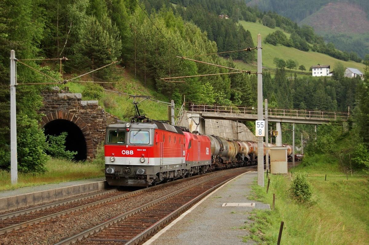 Zastávkou Oberfalkenstein stoupá nákladní vlak v čele se strojem 1044.125 dne 09.06.2009