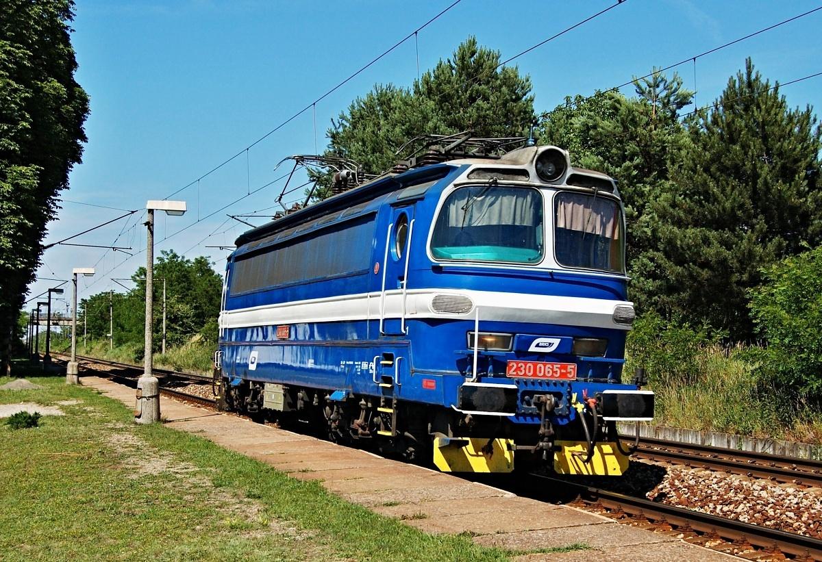 Zastávkou Moravský Ján projíždí laminátka 230.065 dne 14.06.2009
