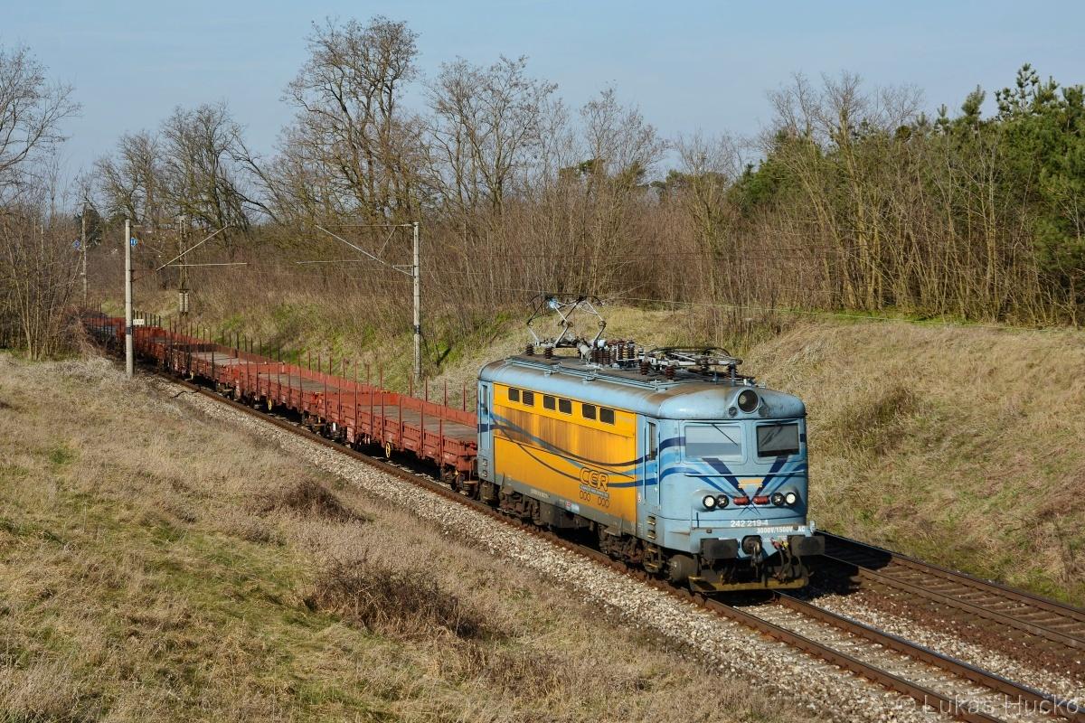 242.219 s nákladním vlakem poblíž zastávky Moravský Ján 19.03.2020