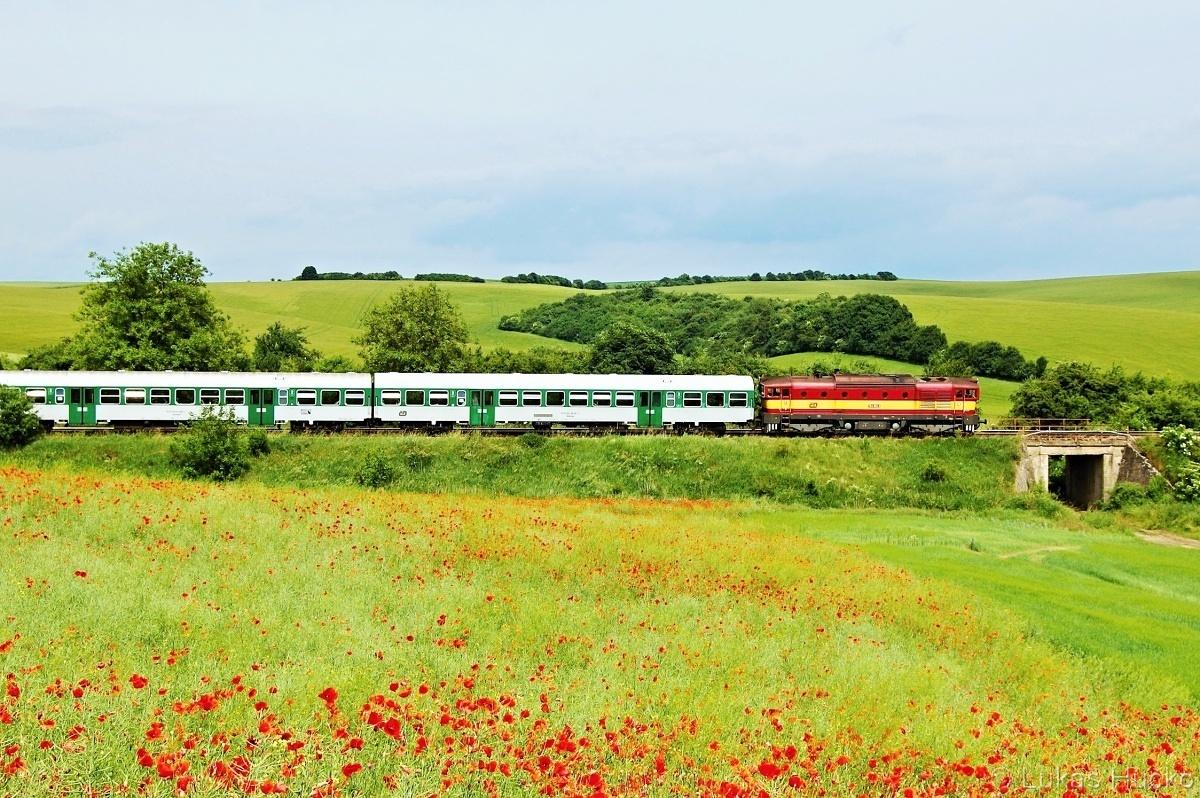 Brejlovec 754.062 klopí oblouky u zastávky Brankovice 10.06.2011 s vlakem Os 4113